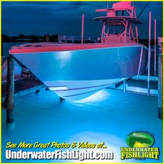 caribbeanbluedocklightboat-2000x2000