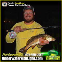 redfishcaughtoverunderwaterfishlightpanamacityfloridacaptblyons-2000x2000