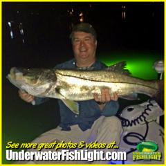 snookcaughtonunderwaterdocklightsbyunderwaterfishlightenglewoodfl-2000x2000
