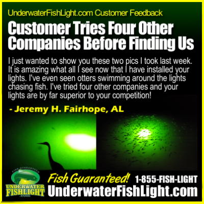 CustomerTries4DifferentDockLightCompaniesBeforeFindingUnderwaterFishLight