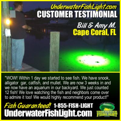 UnderwaterDockLightsbyUnderwaterFishLightCapeCoralFloridaCustomerTestimonial