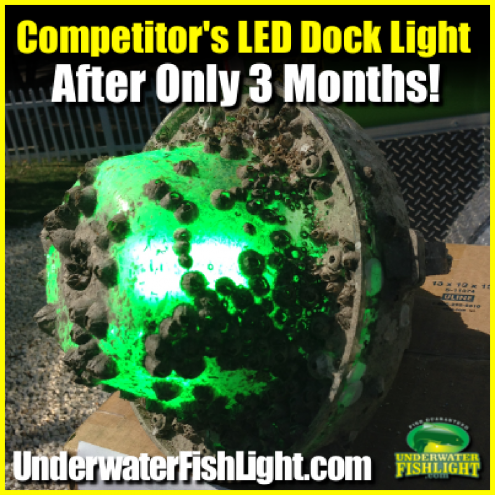 competitorsleddocklightbarnacles-1400x1400