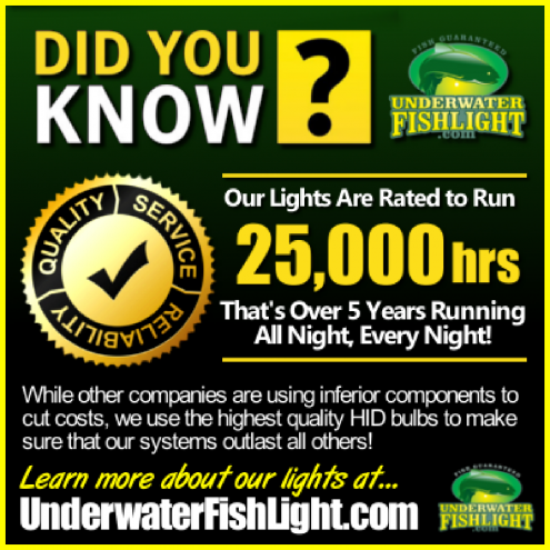 didyouknowourunderwaterlightslast5yearsormoreunderwaterfishlight-1400x1400
