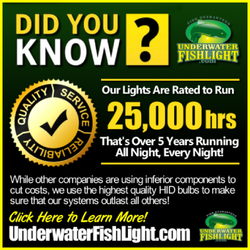 didyouknowourunderwaterlightslast5yearsormoreunderwaterfishlightwebsite-1400x1400