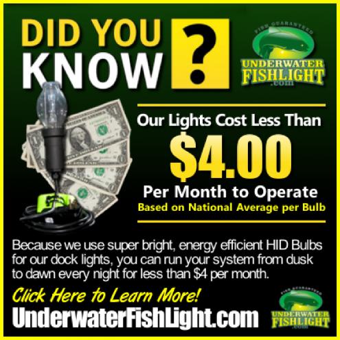 energyefficientunderwaterdocklightsbyunderwaterfishlightfourdollarspermonthoperatingcostclickhere-1400x1400