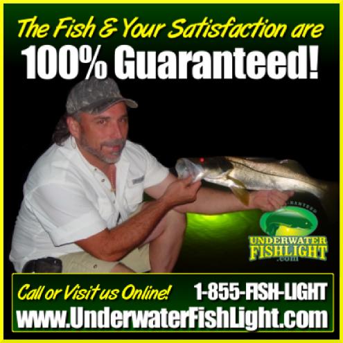 thefishandyoursatisfactionareguaranteedfb4003-12-17-1400x1400