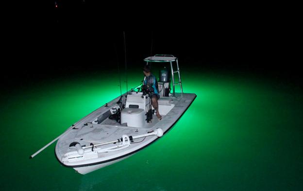 Useful Tips For Night Fishing Lighting Setup